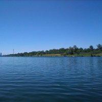 Sprung in die Donau