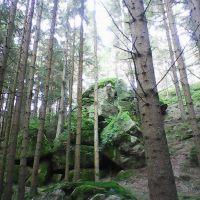 Mysthisches Waldviertel